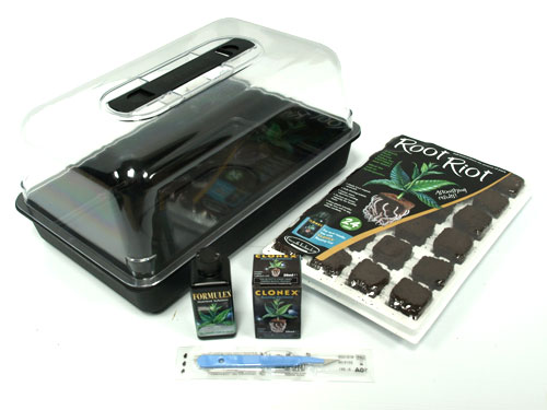 Seeds Root Riot Root Riot Propagation Kit