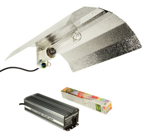 Dutch Barn Reflector Digital Ballast and Lamp