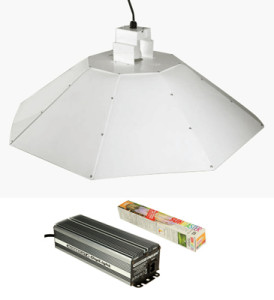 Parabolic Reflector Digital Ballast and Lamp