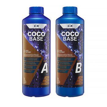 CX COCO BASE