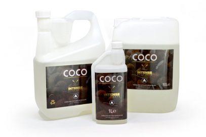 Coco-A-group-web